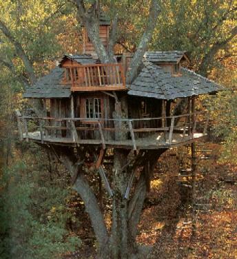 treehouse[1]